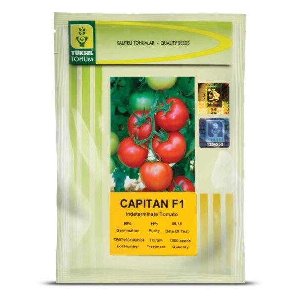 بذر گوجه فرنگی گلخانه ای کاپیتان